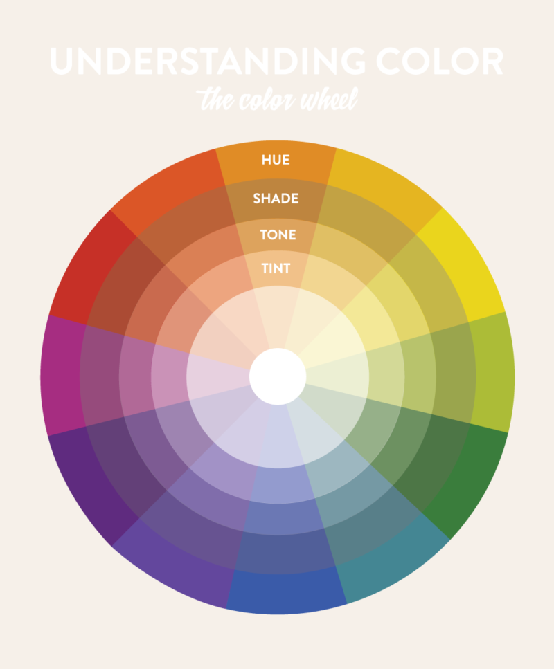Understanding the Color Wheel - Scout Sixteen